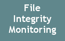 website security file integrity monitoring